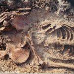 Squelette humain que faire en cas de découverte